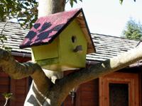 特別付録:「作ってみよう」 ◆ 初級編:かわいい小鳥の巣箱