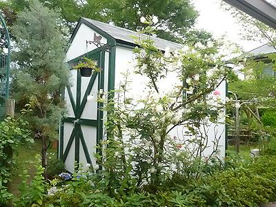 自慢の庭に溶け込む物置。オーダーメイド 6×8