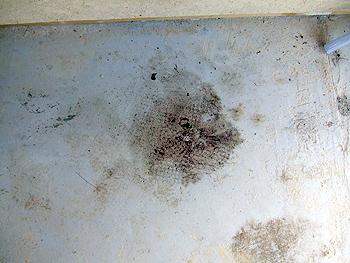 ちょっと変わったガレージの床の掃除方法
