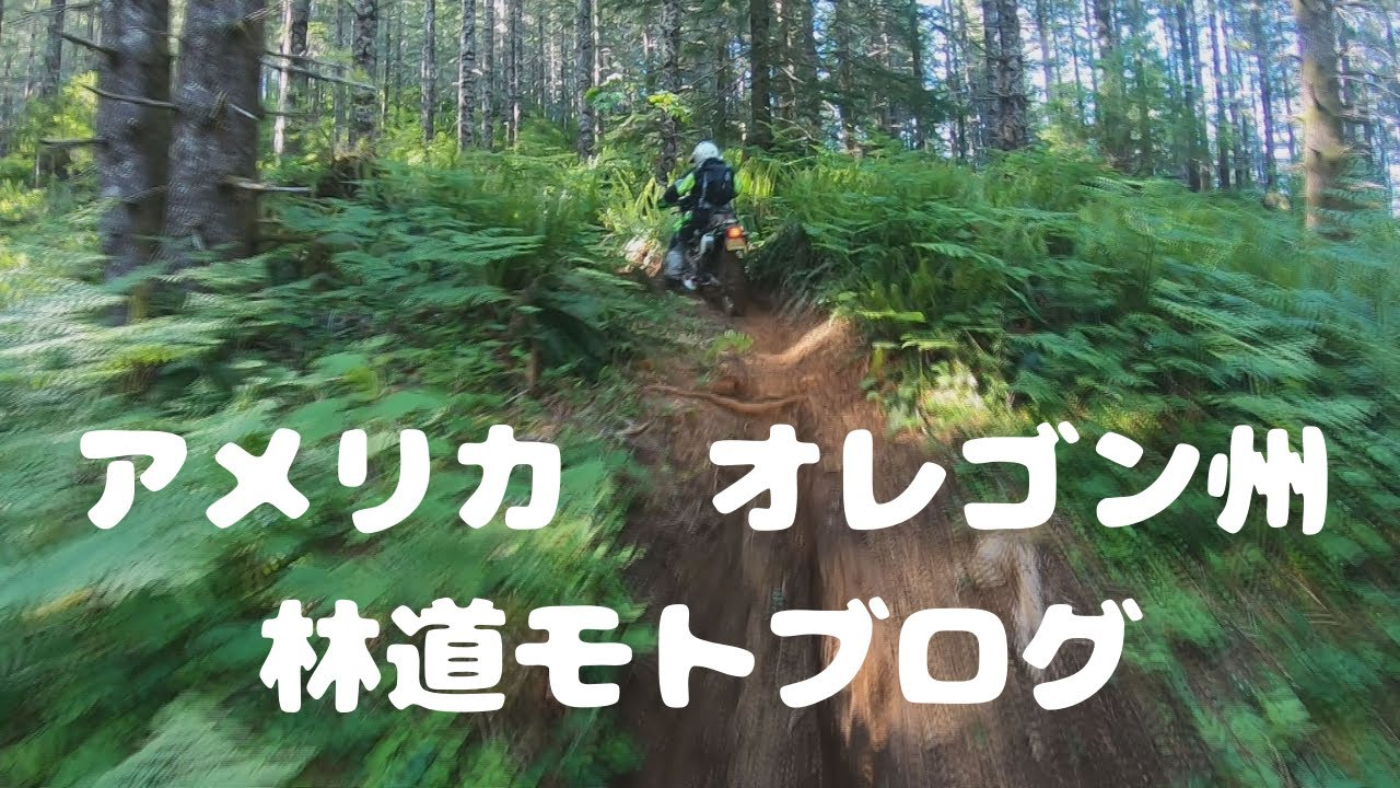アメリカ オレゴン林道モトブログ